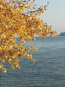 Blick auf den Bodensee bei Konstanz
