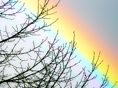 Regenbogen. Lichttherapie. Farbtherapie, Naturheilpraxis Heidrun H. Horn, Konstanz